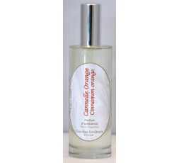 Vaporisateur 100ml CANNELLE ORANGE